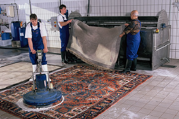 Professional cleaning on carpets conducts good hygiene