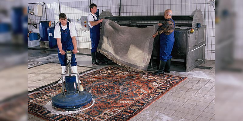 Why You Should Hire a Professional Upholstery and Carpet Cleaning Company